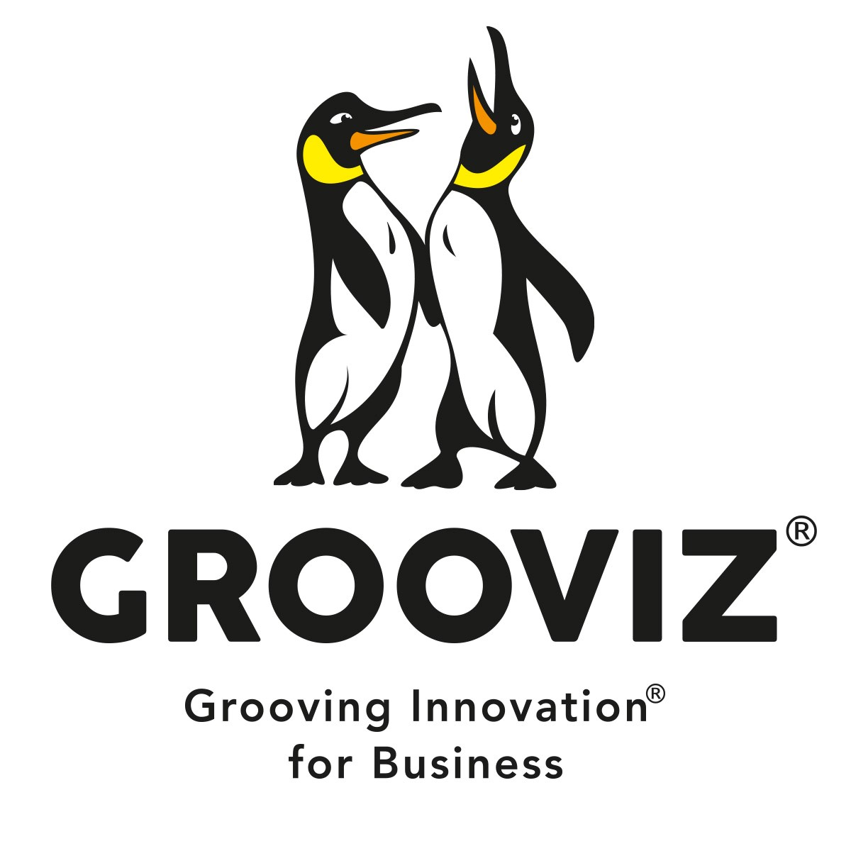 GROOVIZ®grooving-innovation® for business